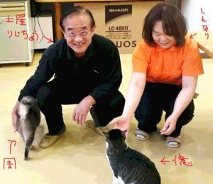 6/16大さんと猫